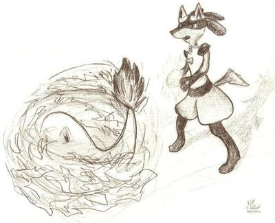 Doodle of Lucario battling Charmander